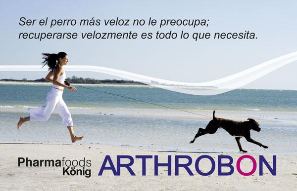 Arthrobon regenerador articular